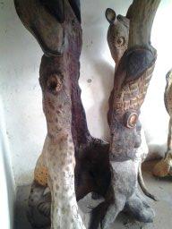 dumisani, impala, chetah, baby elephant