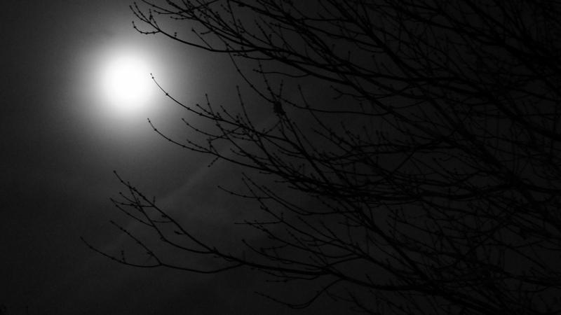 Image: Russell Adams via Flickr