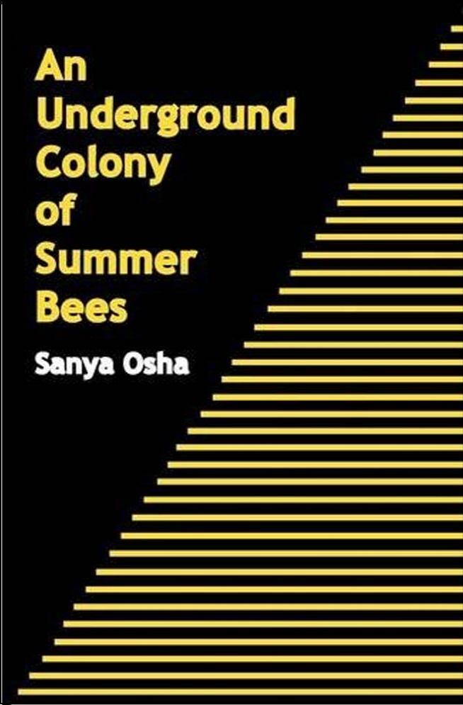underground-colony-of-summer-bees